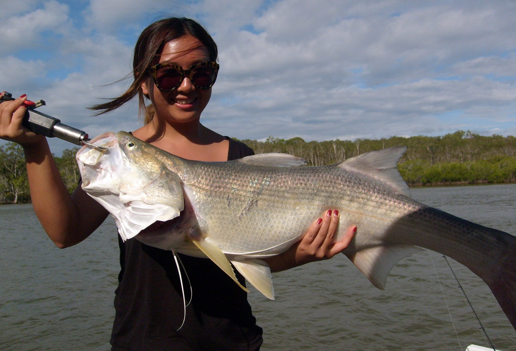 Noosa river weekly fishing report o boat hire for Fisherman s landing fish report